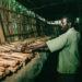 Mémorial national de Ntarama, Rwanda (AKG-IMAGES/GUENAY ULUTUNCOK)